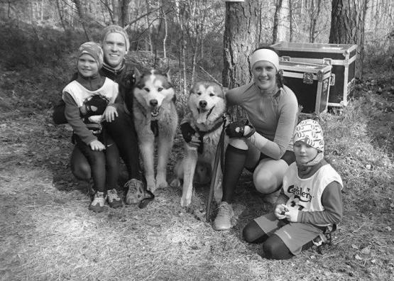 Hendra racedog 2016