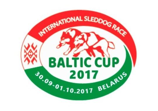 Valgevene 2017 logo
